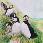 Commissioned Birth card Puffins
